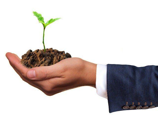 Green economy: una definizione per il presente