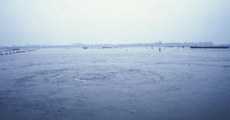 I batteri del Mar Piccolo