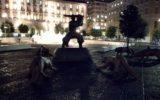 I cento lupi di Rowang a Napoli: ecco l'installazione artistica