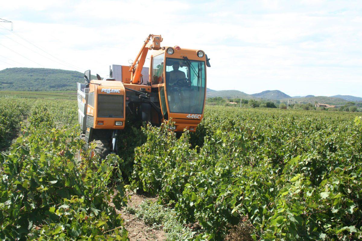 I giovani agricoltori pensano all'agricoltura di precisione