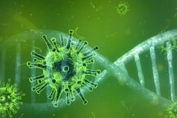 I numeri del Coronavirus tra l'Italia e il resto del mondo