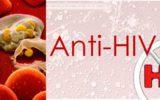 Identificazione di una nuova famiglia di composti anti HIV