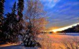 Idratatarsi in inverno: le regole d'oro