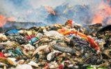 Il Cnr contribuisce a contrastare gli illeciti ambientali