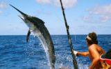 Il Consiglio Europeo sulla pesca d'altura