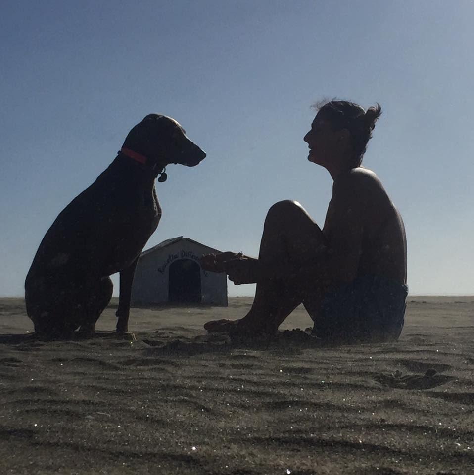 Il corso di formazione Dog Manager IHOD