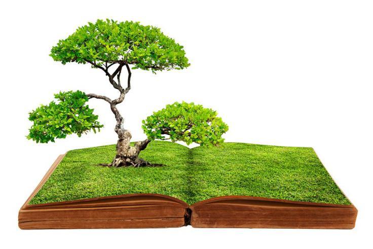 """Il """"Libro Verde"""" degli Ufficiali Giudiziari"""