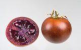 Il pomodoro 'bronzeo'