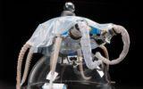 Il Premio Carla Fendi a due donne geniali della robotica