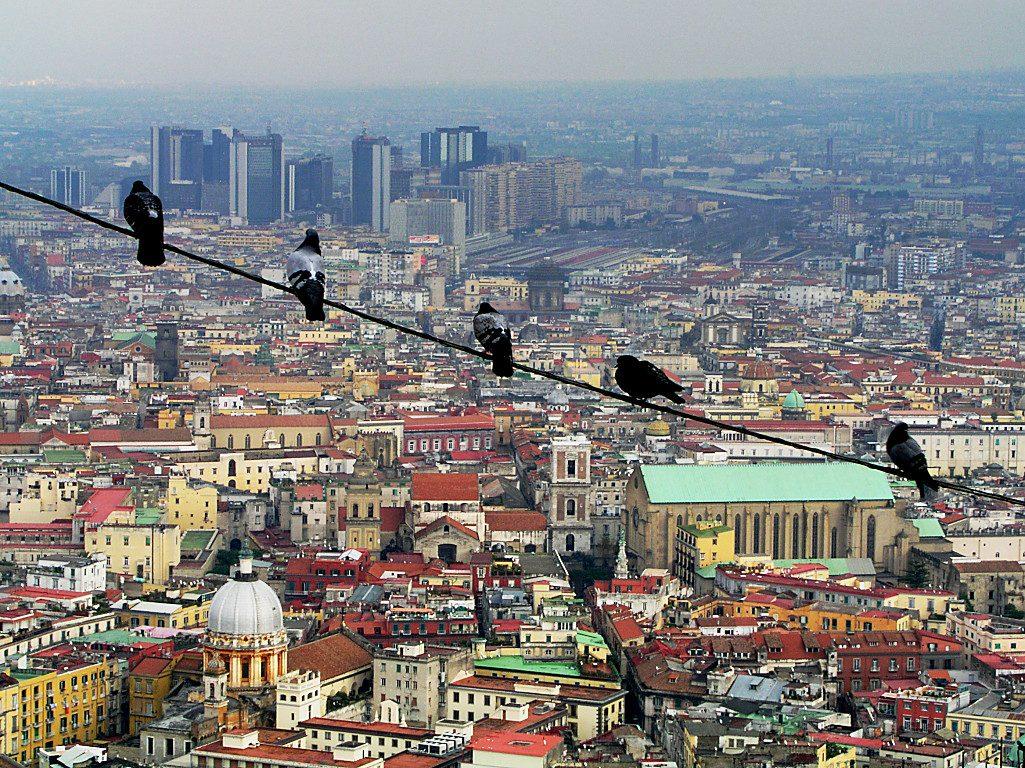 Il progetto: Sviluppo Napoli