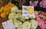 Il successo della floricoltura campana