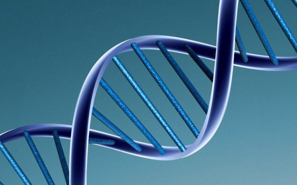 Il test facile del DNA genomico