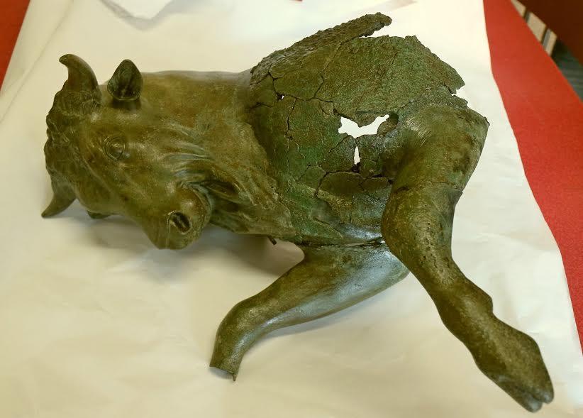 Il Toro cozzante al Museo Egizio di Torino