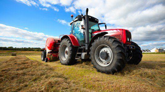 In agricoltura il record di assunti al sud