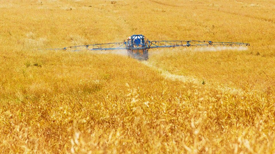 In risalita l'agricoltura nel meridione