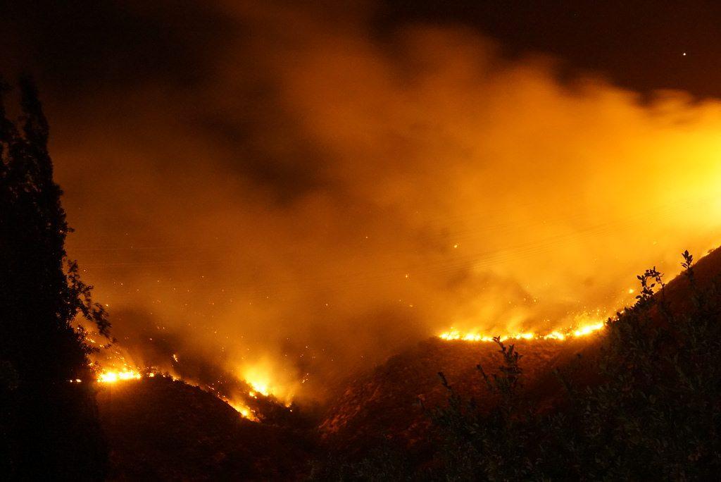 Incendi nel 2019: uno al giorno dall'inizio dell'anno