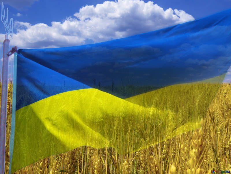 Indipendenza dell'Ucraina: il sostegno dell'UE
