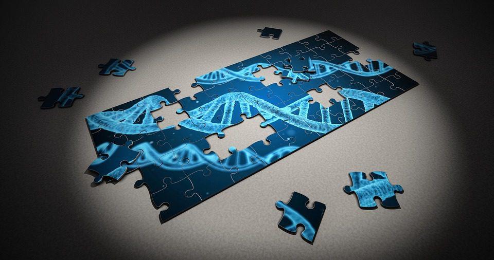 Individuato un nuovo gene associato alla Sla