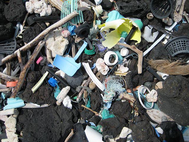 Inquinanti organici persistenti: le nuove norme europee