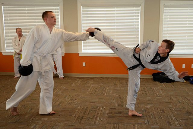 Karate Open 2017