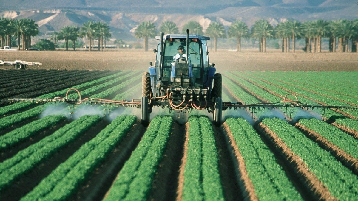 L'agricoltura italiana è la più green d'Europa