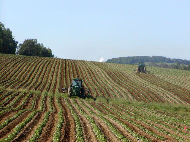 L'agricoltura raddoppia la crescita