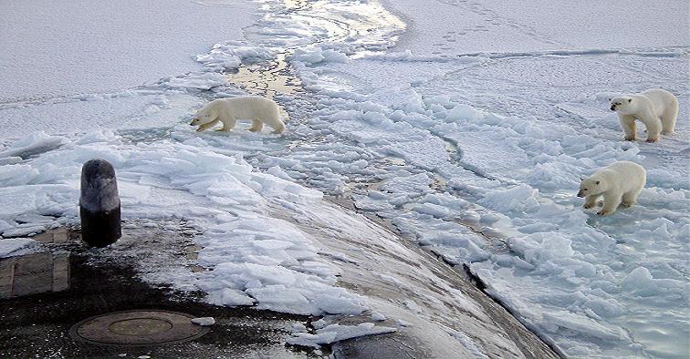 L'Arctic Ocean Raptor