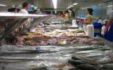 L'attenzione alla sostenibilità di prodotti ittici è in crescita