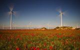 L'Europa crede nelle energie rinnovabili e le energie rinnovabili fanno bene all'Europa