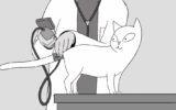 L'Ipertensione Felina