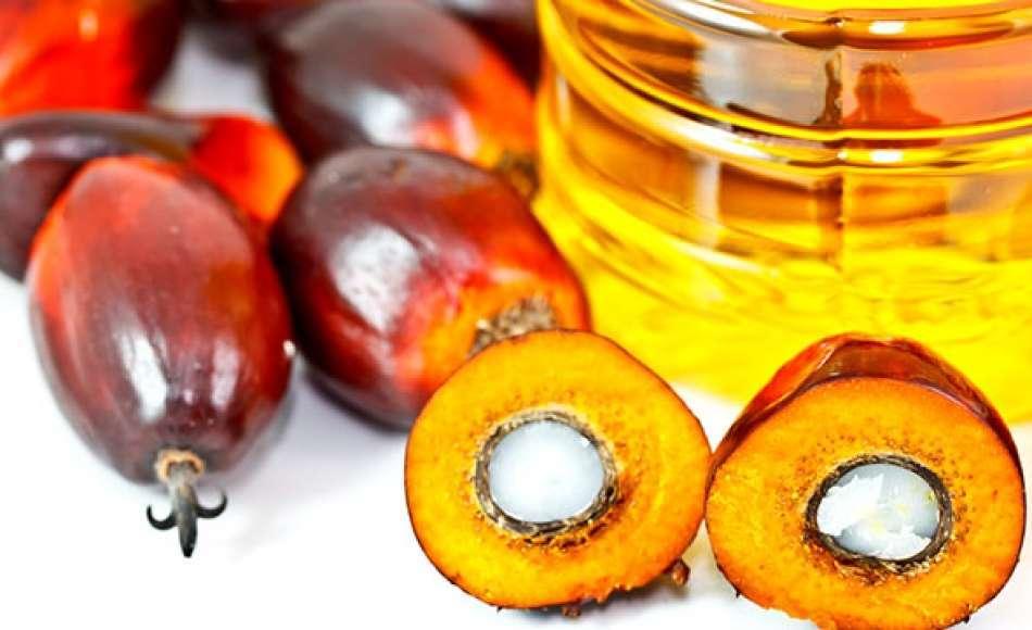 L'olio di palma non ha effetti negativi sulla salute?