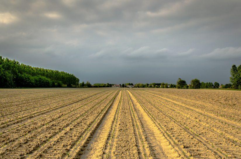 L'orientamento generale dell'Unione Europea per l'irrigazione dei campi