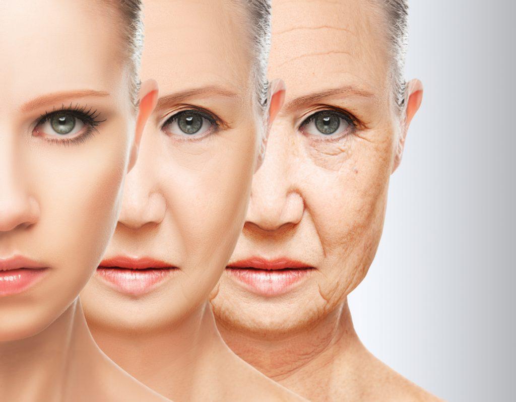 L'utilizzo dei telomeri per contrastare l'invecchiamento precoce