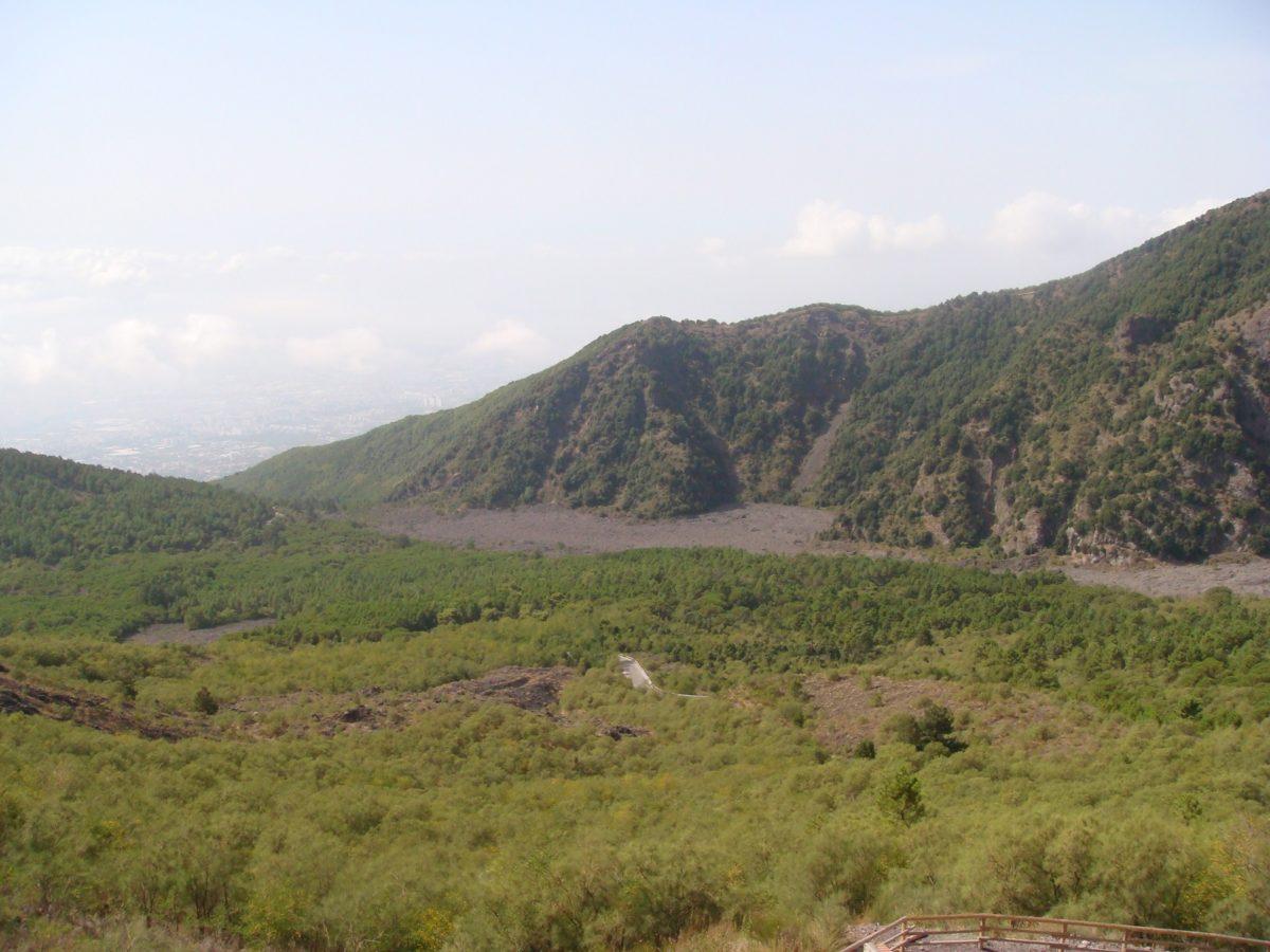 La gestione sostenibile del patrimonio forestale campano