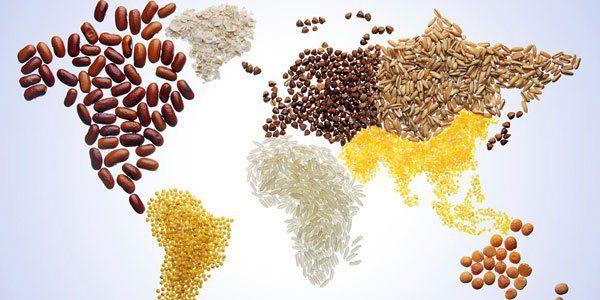 La giornata mondiale alimentazione: il clima nel piatto