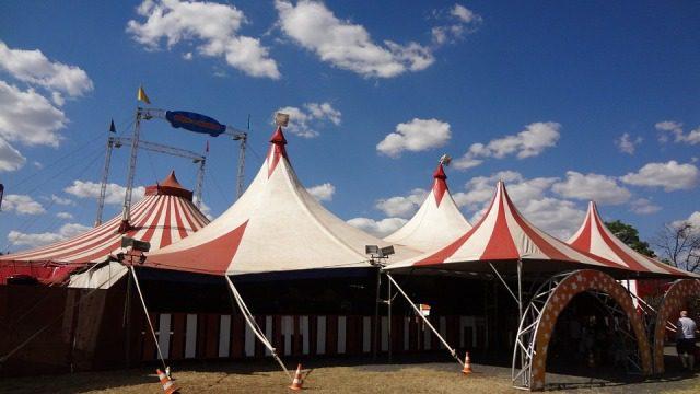 La grande arte del circo