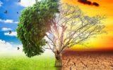 La green economy muove il mercato del lavoro