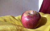 La mela Annurca: i benefici di un prodotto campano unico
