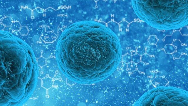 La memoria delle cellule contro malattie