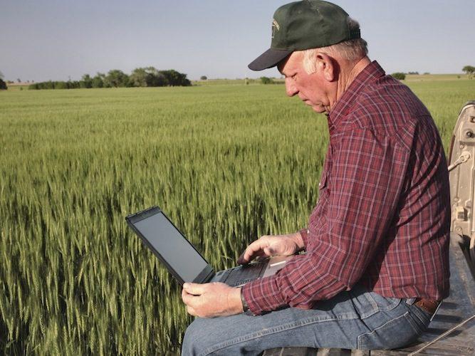 La nuova piattaforma online per  il commercio agricolo internazionale