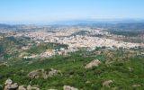 La risposta sismica locale in contesti geologici