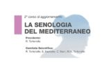 'La senologia del Mediterraneo'