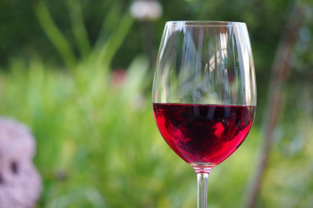 La svolta green del vino