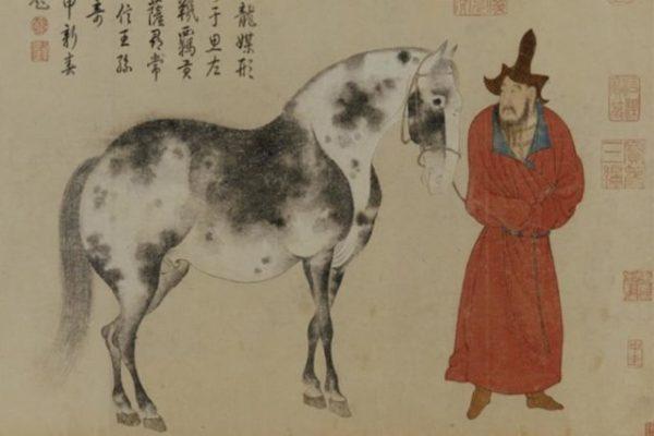 L'allenamento del cavallo/mente selvatico
