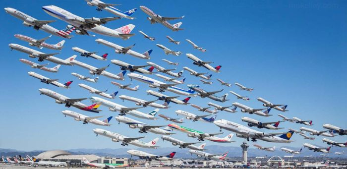 Le linee aeree più amate dagli Italiani
