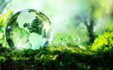 Le Nazioni Unite lanciano l'allarme biodiversità