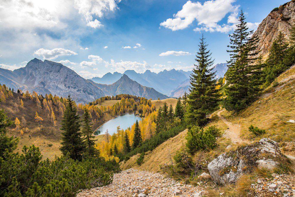 Le più belle foreste d'Italia: PEFC premia i vincitori del concorso fotografico 2019