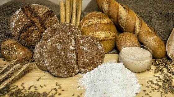 Le speculazioni sul prezzo del pane