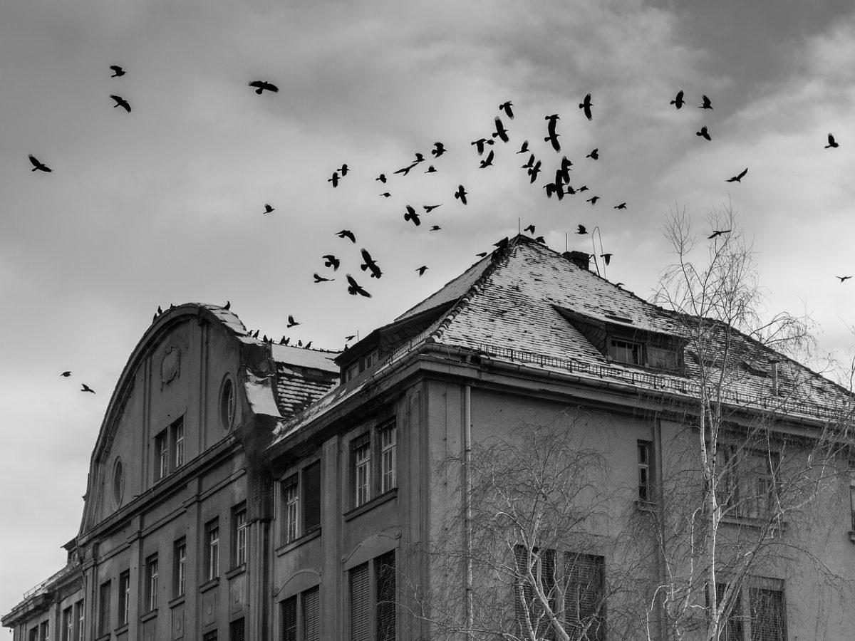 Le storie vere che hanno ispirato i film horror