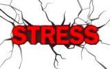 LO STRESS PER PICCOLE COSE ACCORCIA LA VITA!
